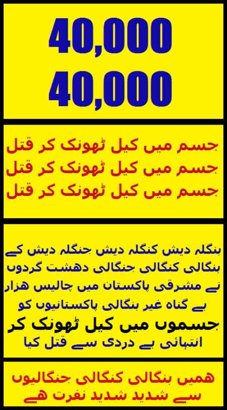 Widget_U_Bangla 40,000 Nails-1